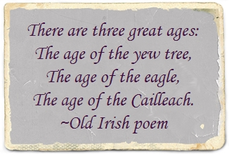 age of the cailleach